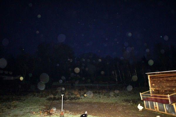 Orbs du 25 au 26 Janvier 2012.