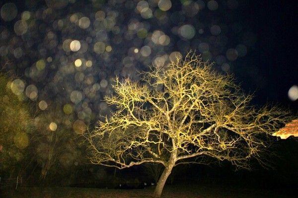 Photo du soir le 24/02/11