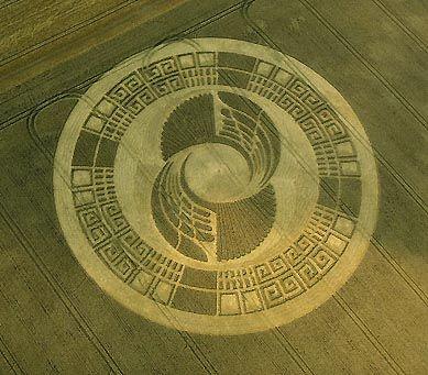 """""""Crop circles"""" Les agroglyphes 7rsswx4y"""