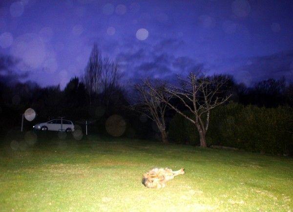 Quelques clichés de ce soir 27 janvier 2012.