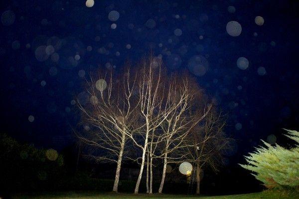 Orbs de ce soir du jeudi 26 janvier 2012*